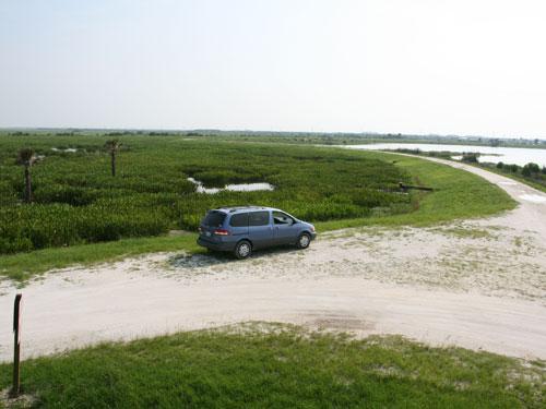 Roads at Viera wetlands
