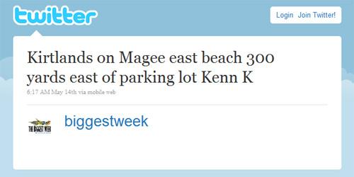 Twitter: Kirtlands on Magee east beach 300 yards east of parking lot Kenn K