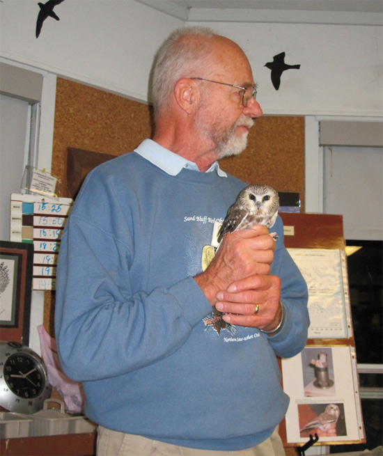 Sand Bluff Bird Observatory founder Lee Johnson with a Saw-whet Owl