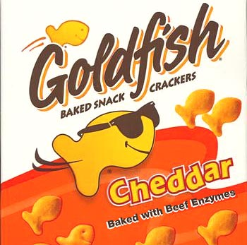 Goldfish with beef gelatin