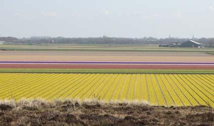 Noord Holland, the Netherlands