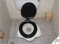 Hybrid Indian/Western toilet