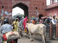 City gate in Jaipur, India