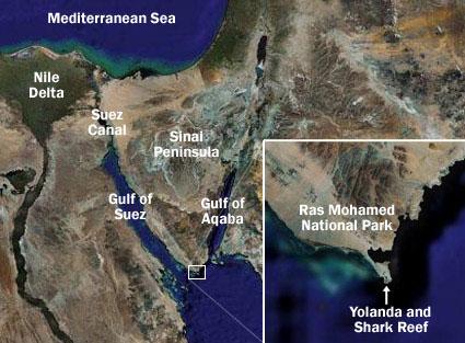 Location of Yolanda and Shark Reef Map