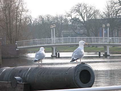 Weddesteegplein, Leiden